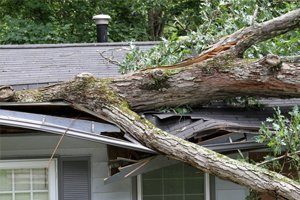 5 Things You Should Know Before Making a Roof Insurance Claim